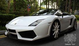DMC Lamborghini Gallardo LP560