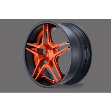 D2 FORGED HLS-06
