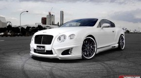 Wald International's Bentley Continental GT Black Bison